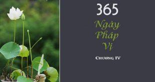 365 ngày pháp vị chương 4