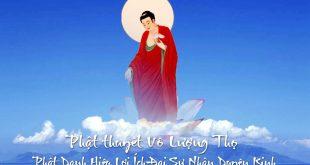 Phật thuyết Vô Lượng Thọ Phật Danh Hiệu Lợi Ích Đại Sự Nhân Duyên Kinh