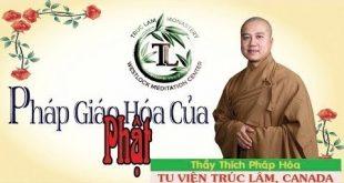 pháp giáo hóa của thầy thích pháp hòa