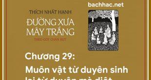 chuong 29