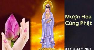 Mượn Hoa Cúng Phật