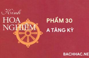 Kinh Hoa Nghiêm - Phẩm 30 - A TĂNG KỲ
