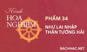 Kinh Hoa Nghiêm - Phẩm 34 - NHƯ LAI NHẬP THÂN TƯỚNG HẢI