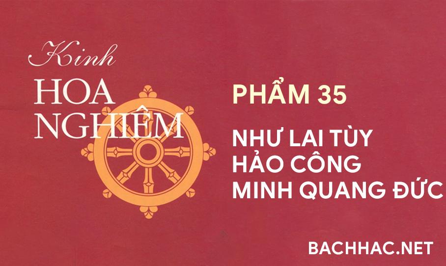 Kinh Hoa Nghiêm - Phẩm 35 - NHƯ LAI TÙY HẢO CÔNG MINH QUANG ÐỨC