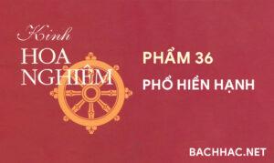 Kinh Hoa Nghiêm - Phẩm 36 - PHỔ HIỀN HẠNH
