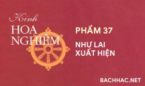 Kinh Hoa Nghiêm - Phẩm 37 - NHƯ LAI XUẤT HIỆN